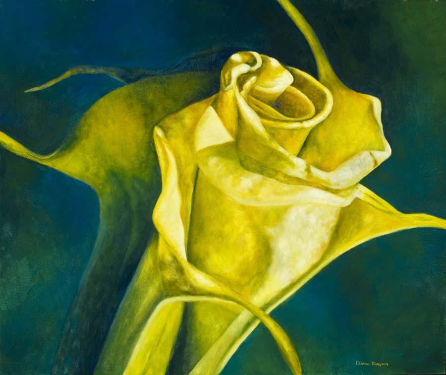 Yellow brugmanzia flower