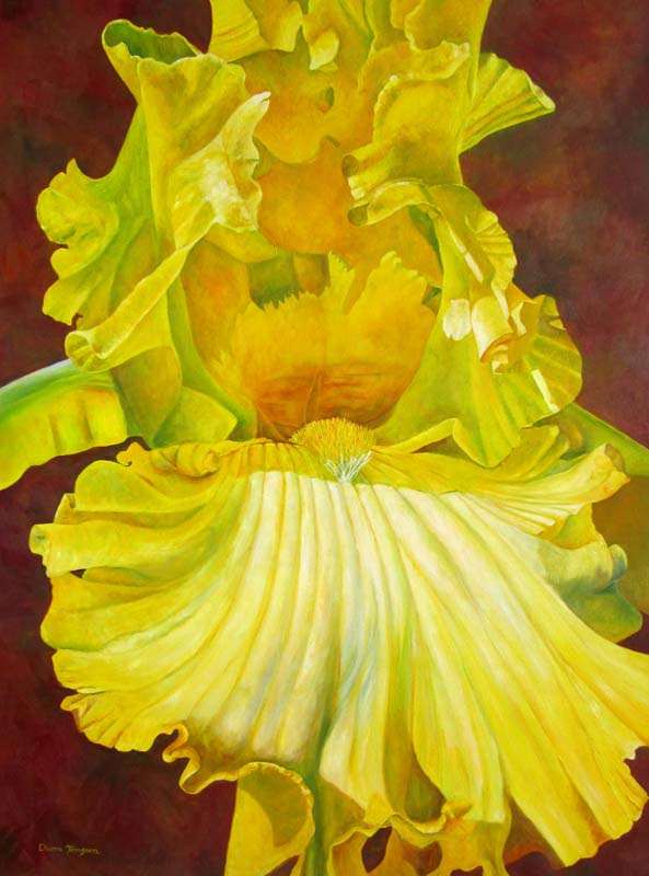 yellow iris painting